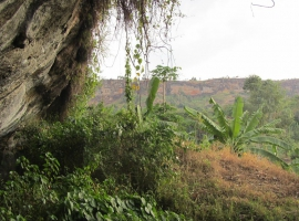 Nalumbahöhle / Nalumba cave, Mount Elgon Permaculture Center, Uganda